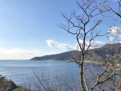 春を待つ伊豆半島。