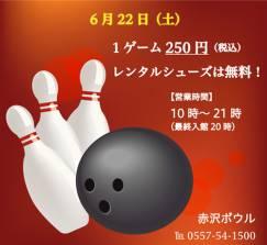 通常1ゲーム515円のところ本日は250円!