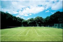 伊豆でテニスを楽しむなら